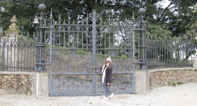 portão grande de ferro