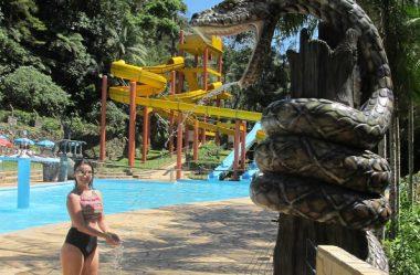 Porque Você Ainda Não Conhece A Cascata Carolina Em Santa Catarina? Guia Completo
